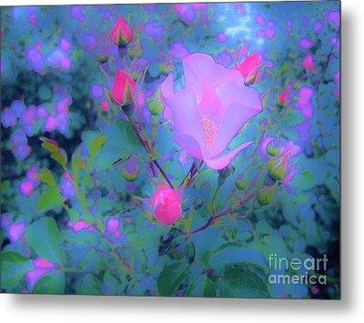 Gypsy Rose - Flora - Garden Metal Print by Susan Carella