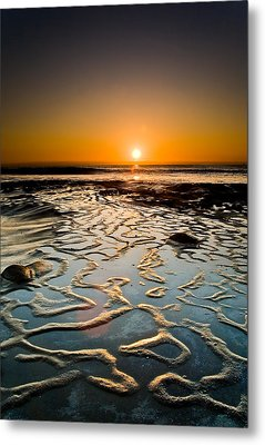 Halcyon Metal Print by Ryan Weddle