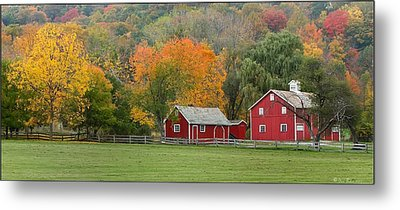 Hale Farm And Village Metal Print by Daniel Behm