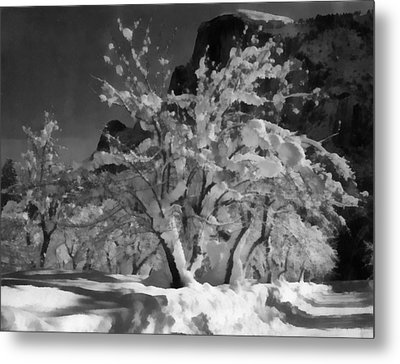 Half Dome Apple Orchard Metal Print by Ansel Adams