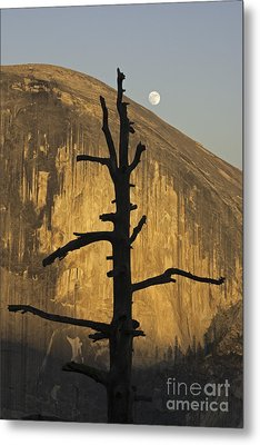 Half Dome With Full Moon Metal Print by Judi Baker