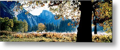 Half Dome, Yosemite National Park Metal Print by Panoramic Images