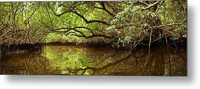 Halfway Creek At Low Tide - Everlglades Metal Print by Matt Tilghman