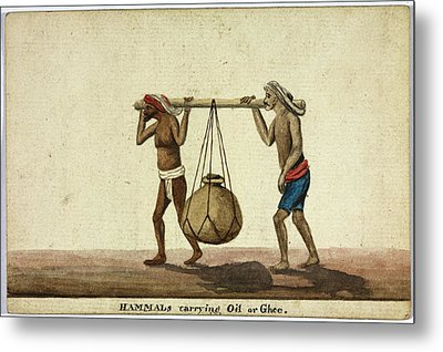 Hammals Carrying Oil Or Ghee Metal Print