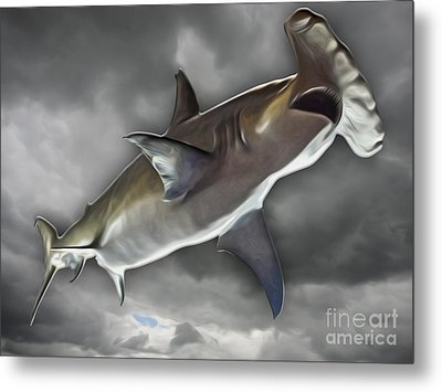 Hammerhead Metal Print by Gregory Dyer