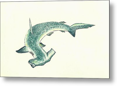 Hammerhead Shark Metal Print by Michael Vigliotti