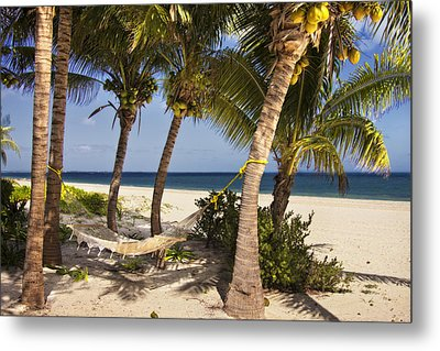 Hammock And Palm Trees  Metal Print by Yelena Rozov