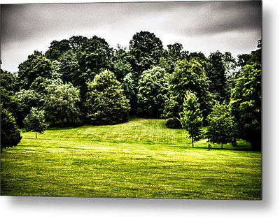 Hampstead Heath Greens Metal Print by Lenny Carter