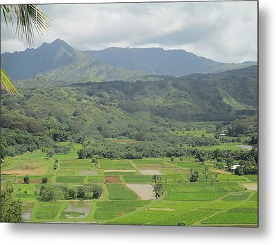 Metal Print featuring the photograph Hanalei by Alohi Fujimoto