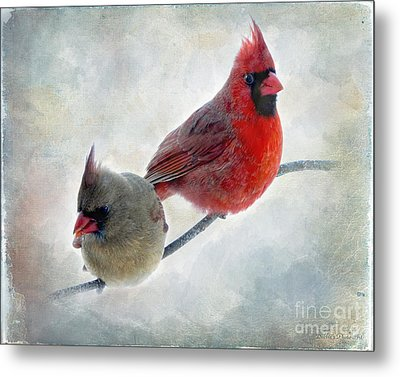 Handsome Couple IIi Metal Print by Debbie Portwood