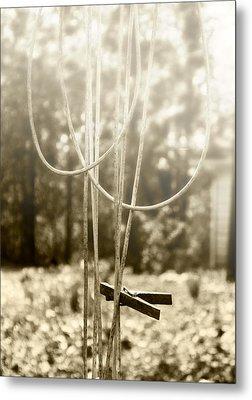 Hang It Up Metal Print by Kristie  Bonnewell