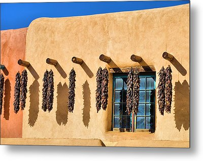Hanging Around In Taos Metal Print