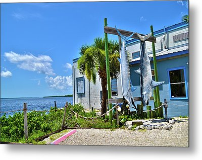 Metal Print featuring the photograph Hanging In Matlacha Florida by Timothy Lowry