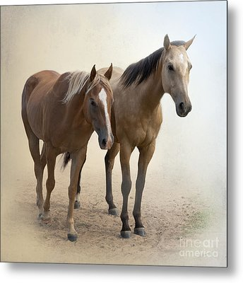 Hanging Out Together Metal Print by Betty LaRue