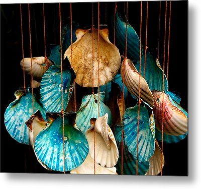 Hanging Together - Sea Shell Wind Chime Metal Print by Steven Milner