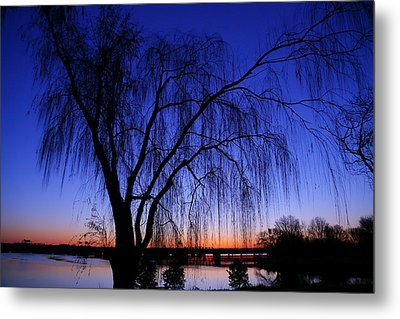 Hanging Tree Sunrise Metal Print by Metro DC Photography
