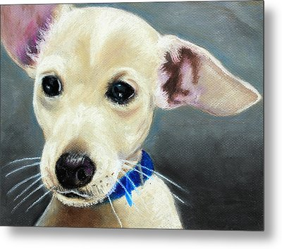 Metal Print featuring the painting Hank by Jeanne Fischer