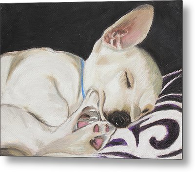 Hanks Sleeping Metal Print by Jeanne Fischer