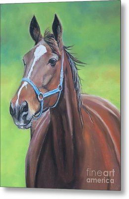 Hanover Shoe Farm Horse Metal Print by Charlotte Yealey