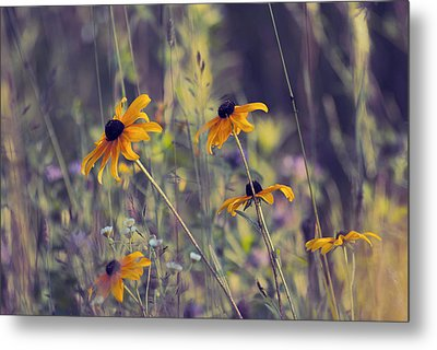 Happiness Is In The Meadows - L03 Metal Print