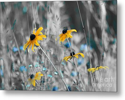 Happiness Is In The Meadows - Sc02a Metal Print