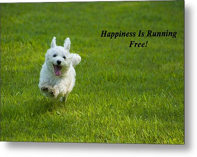 Happiness Is Running Free Metal Print