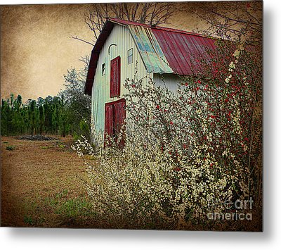 Happy Barn In Spring Metal Print by Lorraine Heath