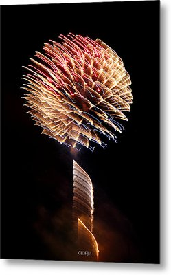 Metal Print featuring the photograph Happy Birthday America by Lorella  Schoales