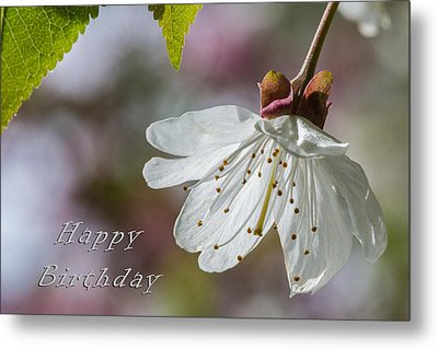 Happy Birthday Blossom Metal Print