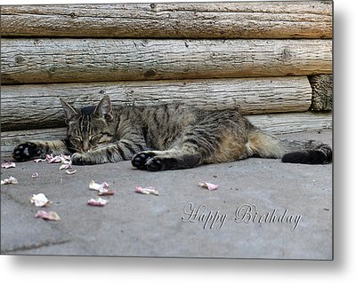 Happy Birthday Sleeping Cat Metal Print