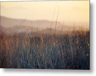 Metal Print featuring the photograph Happy Camp Canyon Magic Hour by Kyle Hanson