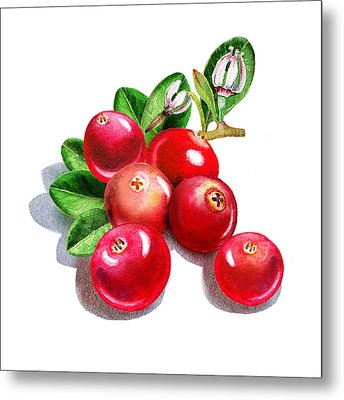Happy Cranberry Bunch Metal Print by Irina Sztukowski