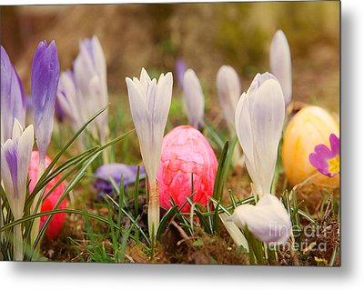 Metal Print featuring the photograph Happy Easter 2 by Christine Sponchia