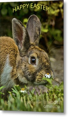 Happy Easter Metal Print by Anne Rodkin
