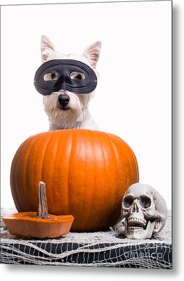 Happy Halloween Metal Print by Edward Fielding