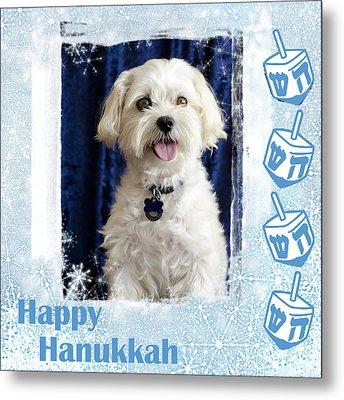 Happy Hanukkah Maltipoo Metal Print by Harold Bonacquist