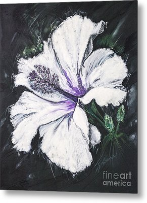 Happy Hibiscus Metal Print by Scott and Dixie Wiley