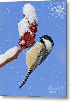 Happy Holidays... Metal Print by Nina Stavlund