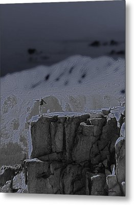 Happy On The Edge Metal Print by Jeremy Rhoades