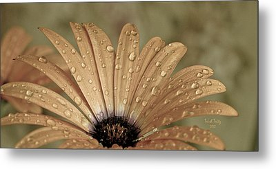 Happy To Be A Raindrop Metal Print
