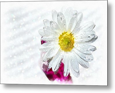 Happy To See You Metal Print by Krissy Katsimbras