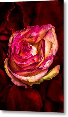 Happy Valentine's Day - 1 Metal Print by Alexander Senin