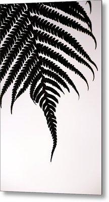 Hapu'u Frond Leaf Silhouette Metal Print