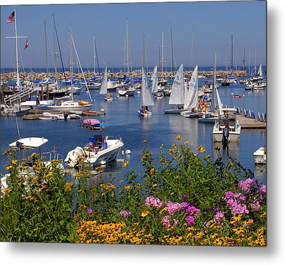 Metal Print featuring the photograph Harbor In Bloom by Caroline Stella