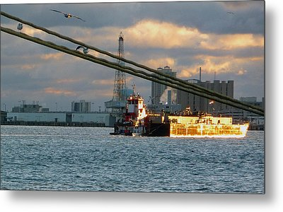 Metal Print featuring the photograph Harbor Life by John Collins