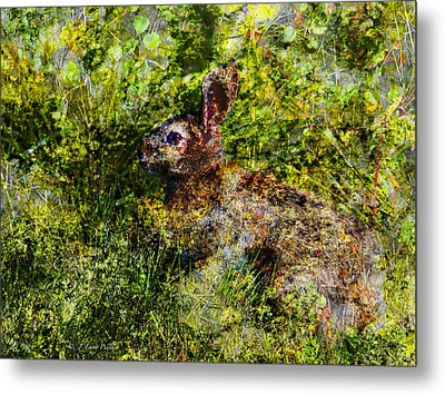 Hare In Hiding Metal Print by J Larry Walker