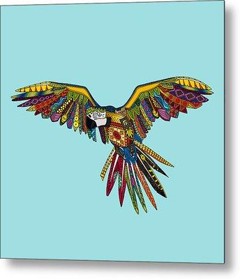 Harlequin Parrot Metal Print