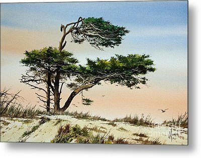 Harmony Of Nature Metal Print by James Williamson