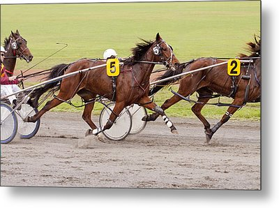 Harness Racing Metal Print by Michelle Wrighton