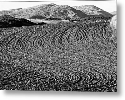 Harrowed Field Metal Print